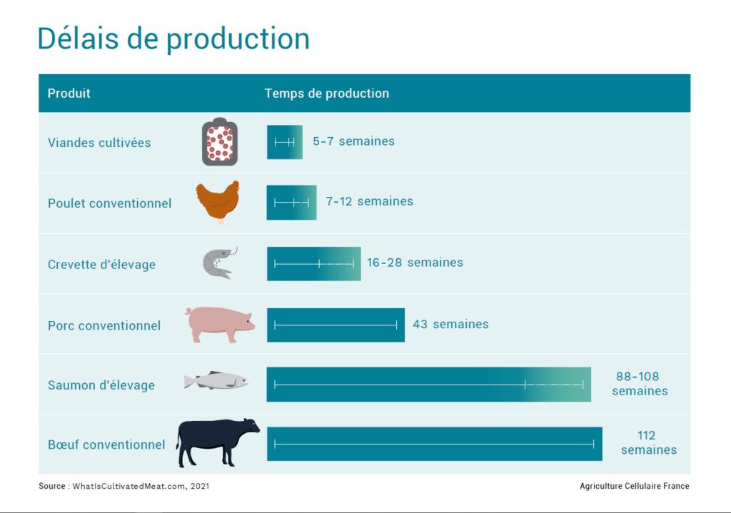 Temps production viande cultivée